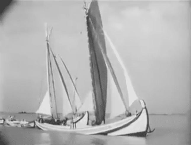 Portugalvideo 1950